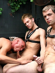 Blow Jobs in the Back Room by Backroom Fuckers image #4