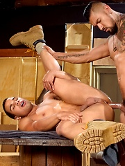 Boomer Banks & Trelino by Raging Stallion image #11