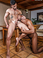 Sean Xavier and Andy Star Celebrate A Bareback Cinco De Mayo by Lucas Entetainment image #11