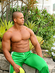 Bald latin muscle man Felipe Gigante