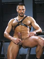 Arpad Miklos shows his boner and ass
