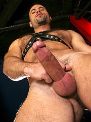 Hairy muscle man in leather gear