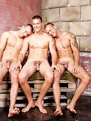 Jason Visconti, Jimmy Visconti and Joey Visconti jack off and toy play