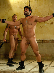 Two bodybuilder soldiers tie up, flog and beat each other. One fucks the other in bondage.