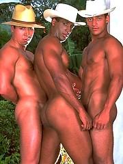Gaspar Moreno, Rogerio Peixoto & Luis Machado - (AMAZON ADVENTURE)