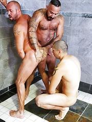 Men Over 30 - Gym Buddies