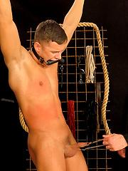 Martin Hovor spanking